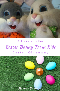 Easter Bunny Train Ride Giveaway