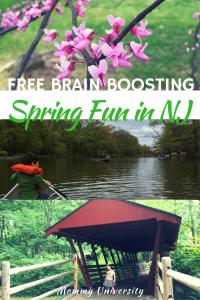 Free Spring Fun