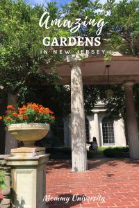 Amazing Gardens in New Jersey