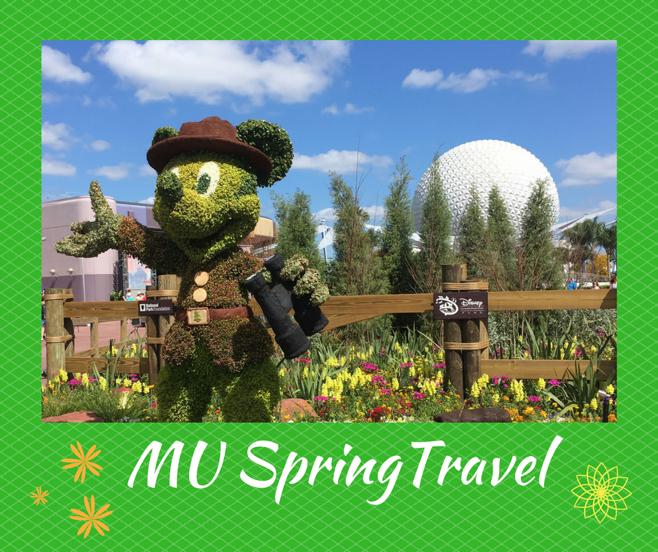 spring travel sidebar
