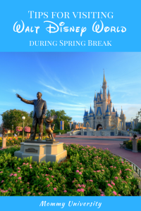 tips spring break (2)