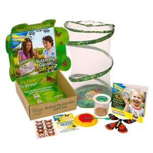 Insect Lore Butterfly Garden Gift