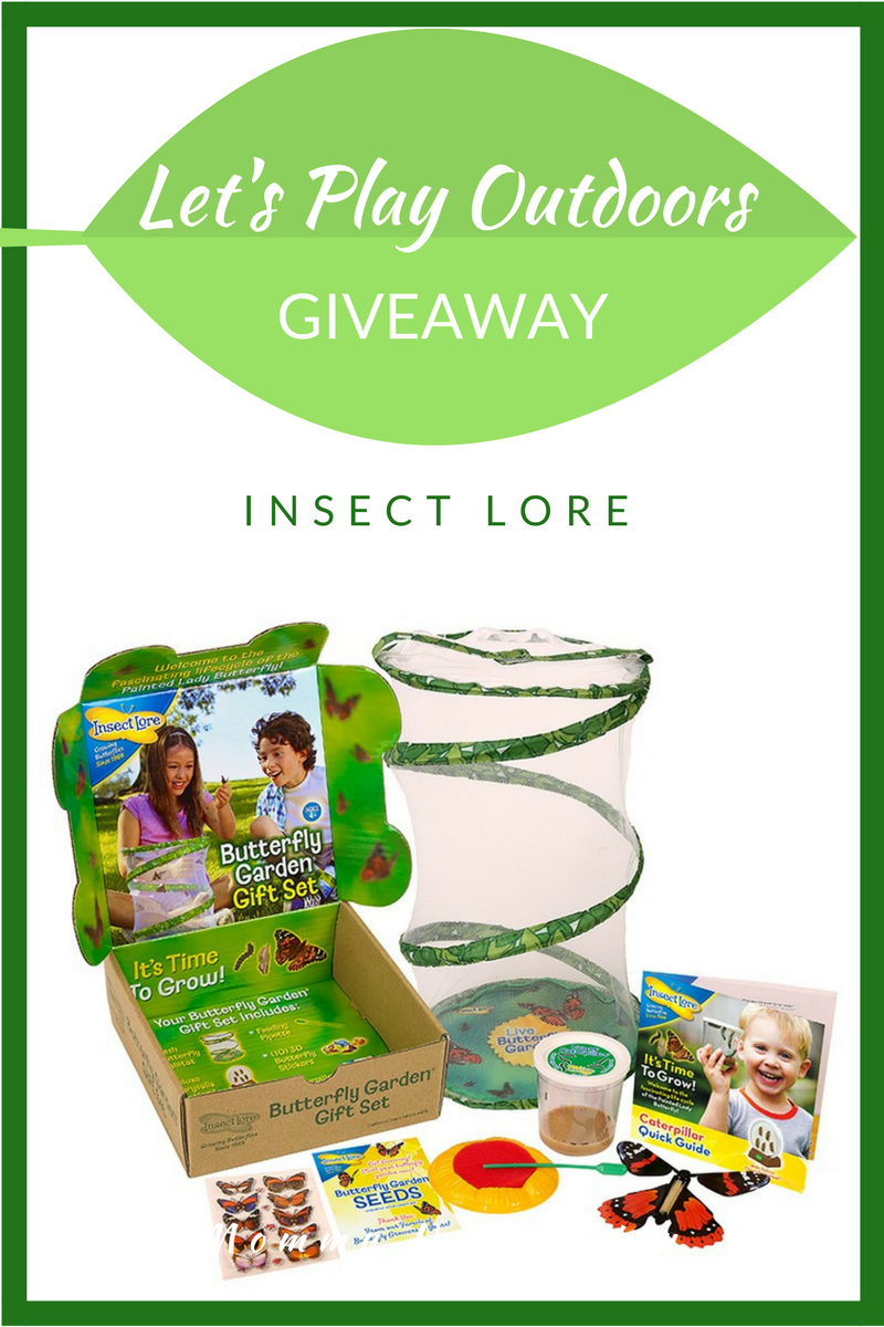 Let's Play Outdoors Giveaway Insect Lore