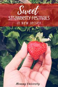 Sweet Strawberry Festivals in NJ