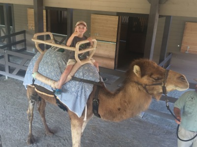 Riding a Camel at Turtle Back Zoo