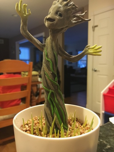 Grow and Glow Groot beginning to sprout