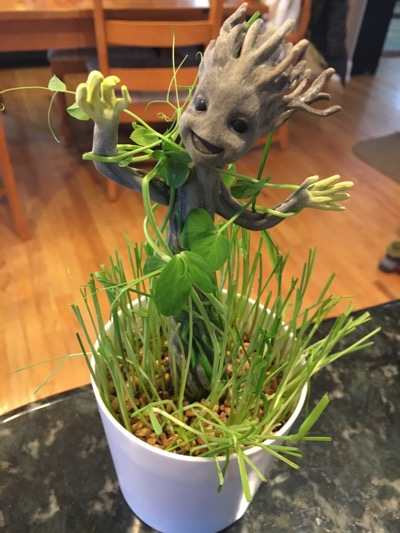 Grow and Glow Groot Completed