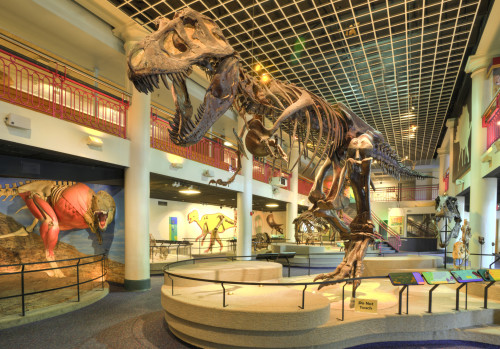 Dinosaur Hall at Academy of Natural Sciences