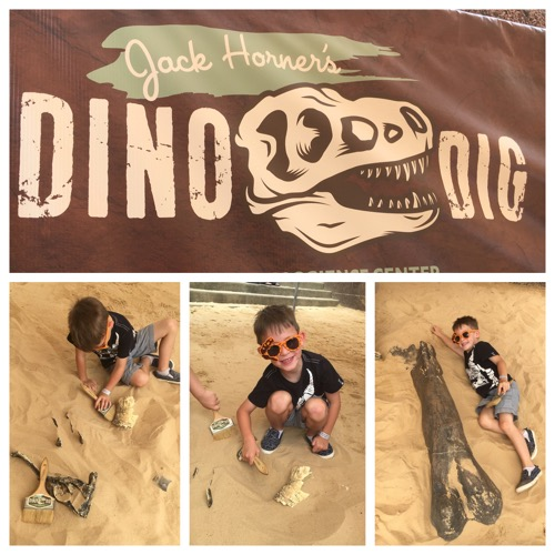 Dino Dig Collage