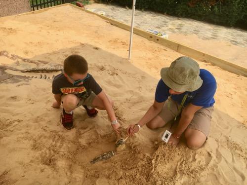 Dino Dig Volunteer