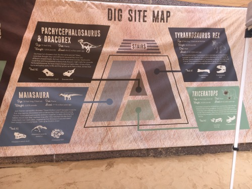 Dino Dig Site Map