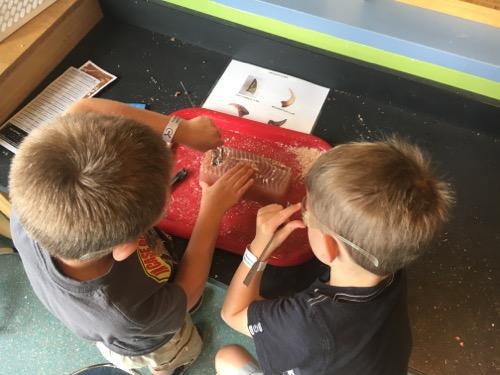 Dino Fossil Lab