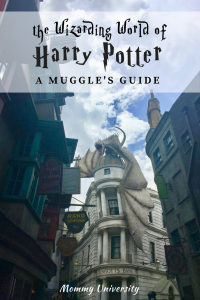 The Wizarding World of Harry Potter: A Muggle's Guide