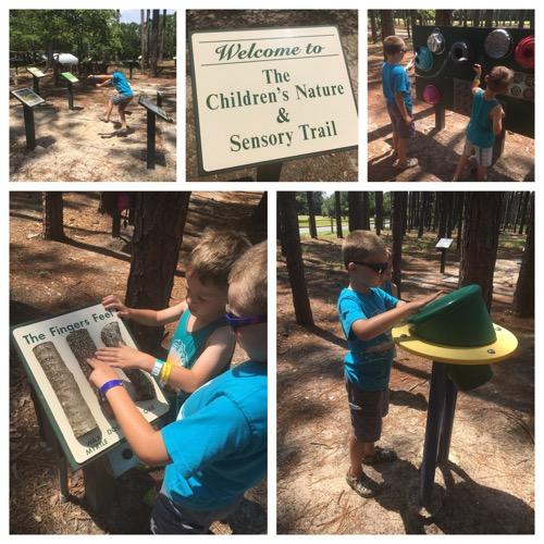 Sensory Trail at Brookgreen Gardens