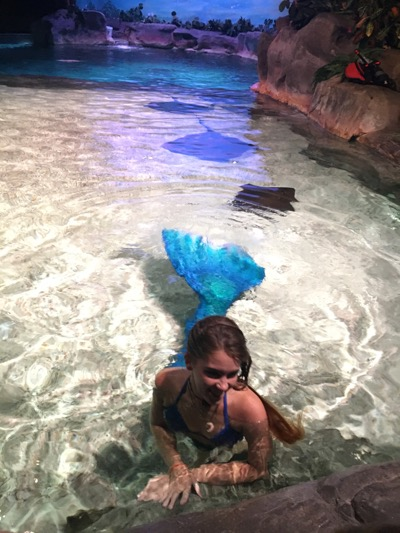 Mermaid At Ripley S Aquarium