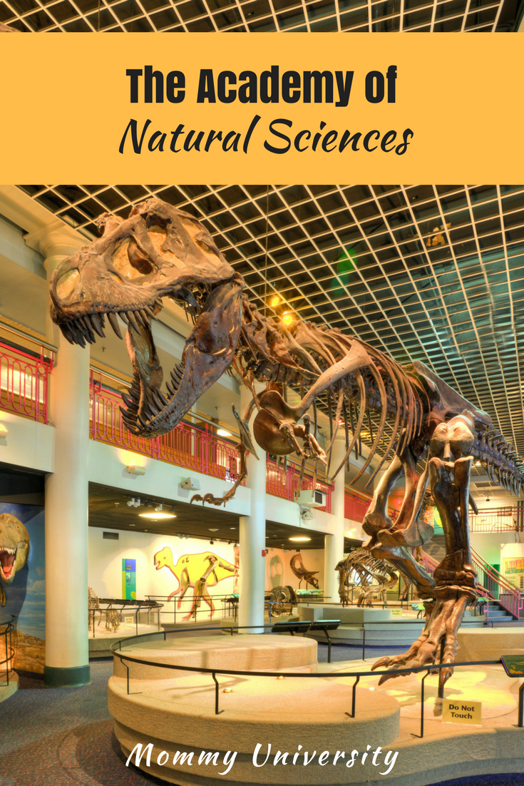 The Academy of Natural Sciences review