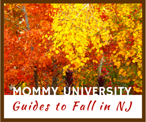 Fall Guides in NJ sidebar (1)