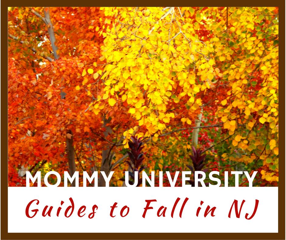 Fall Guides in NJ sidebar (1)