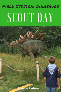 Scout Day at Field Station Dinosaurs