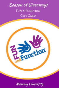 Season of Giveaways Fun & Function