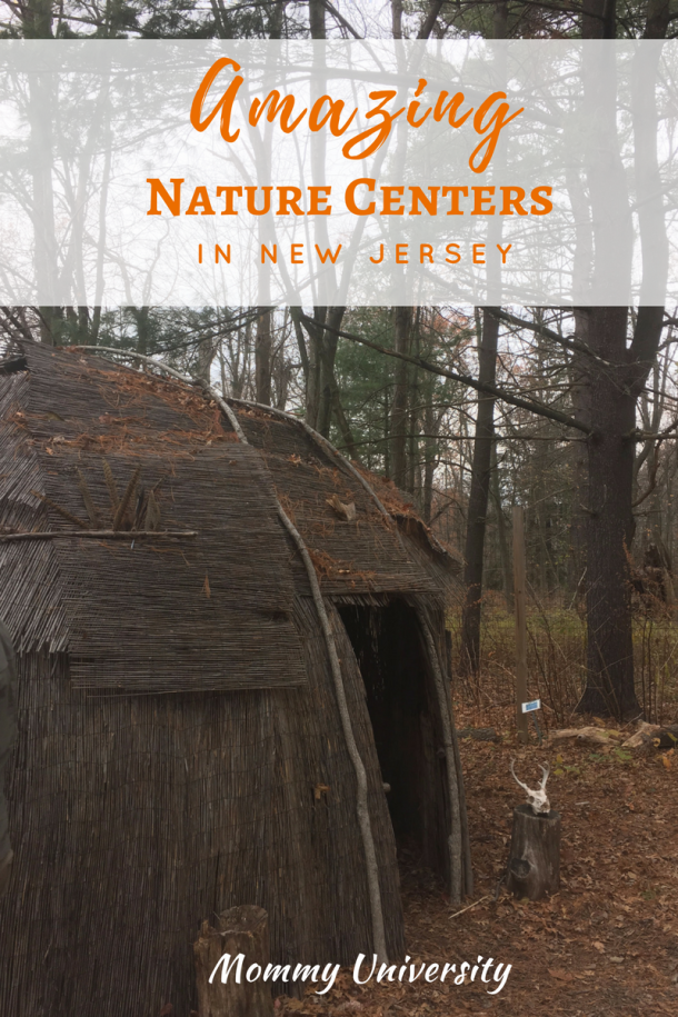 Amazing Nature Centers in New Jersey