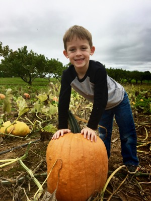 Pumpkin Picking at Donaldson Farms