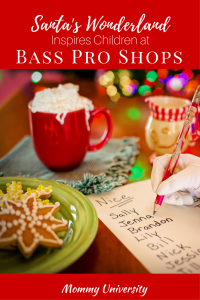 Santa's Wonderland Inspires Children at Bass Pro Shop
