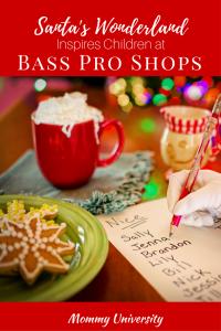 Santa's Wonderland Inspires Children at Bass Pro Shop