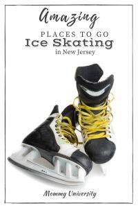 Amazing Places to Go Ice Skating