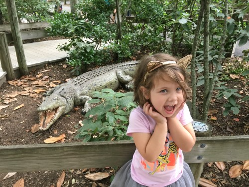 Hidden Treasures at Bergen County Zoo