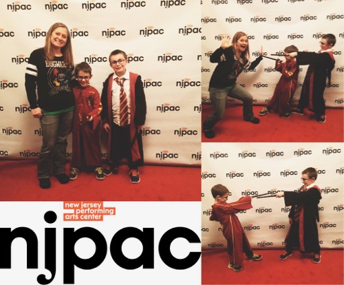 Harry Potter NJPAC Collage