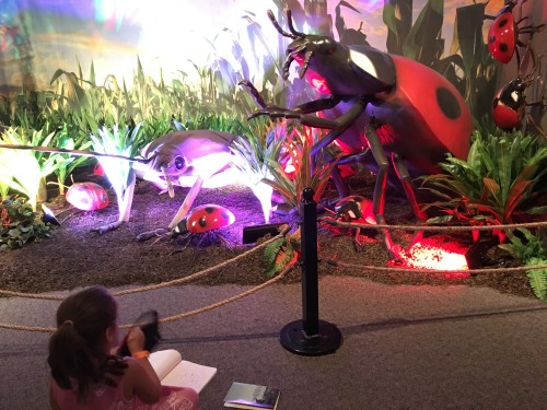 Xtreme Bugs at The Academy Of Natural Sciences