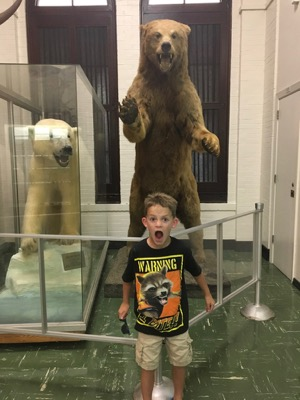 Bear at LSU Museum of Natural Science