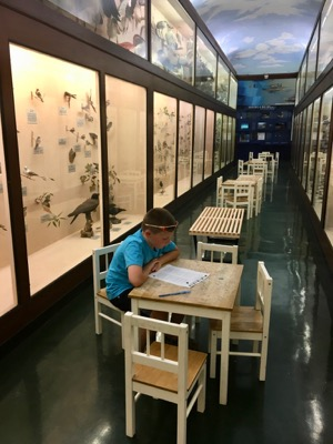 Worksheets at LSU Museum of Natural Science
