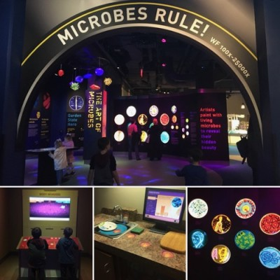 Microbes Exhibit at LSC