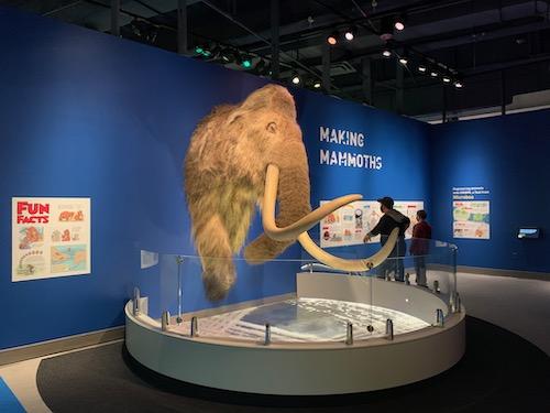 Making Mammoths at LSC