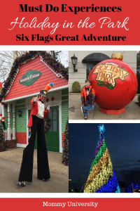 Must Do Experiences at Holiday in the Park