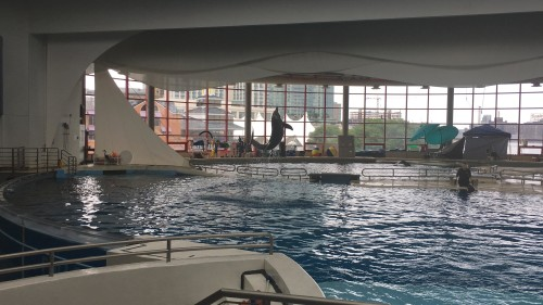 National Aquarium in Baltimore, Maryland