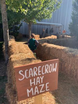 LSC Scarecrow Hay Maze
