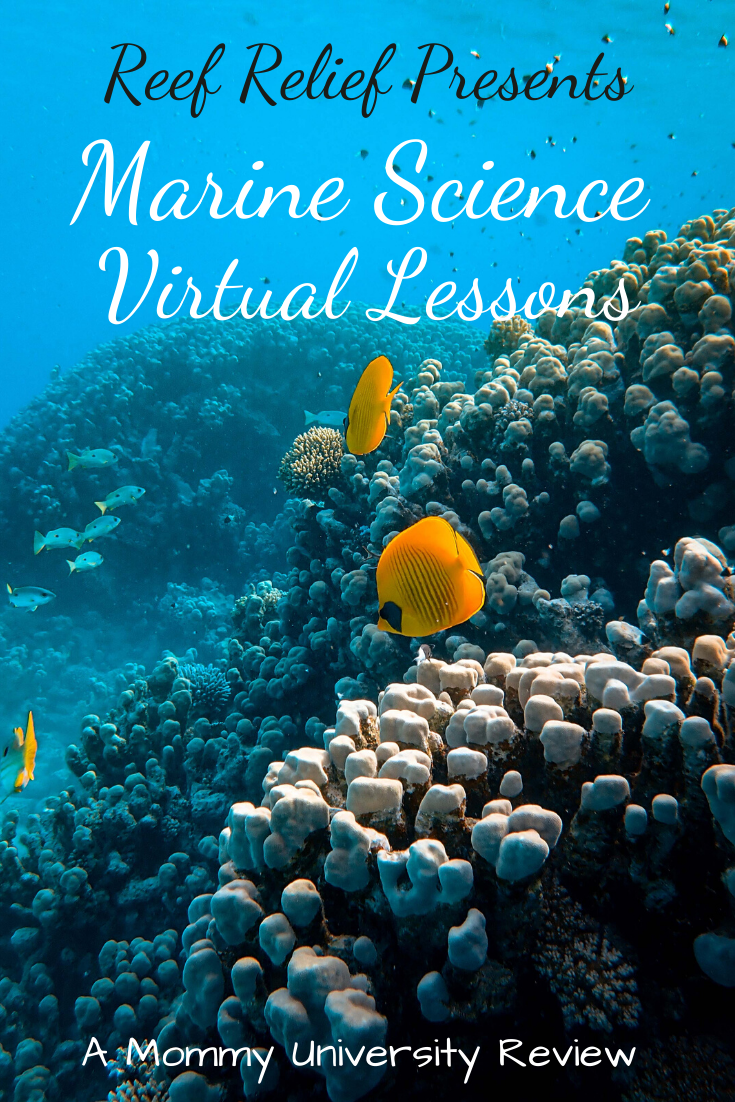 Reef Relief Presents Marine Science Virtual Lessons