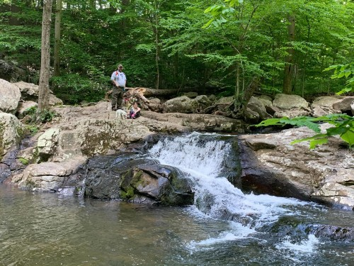 Hike New Jersey : Buttermilk Falls Natural Area in Mendham