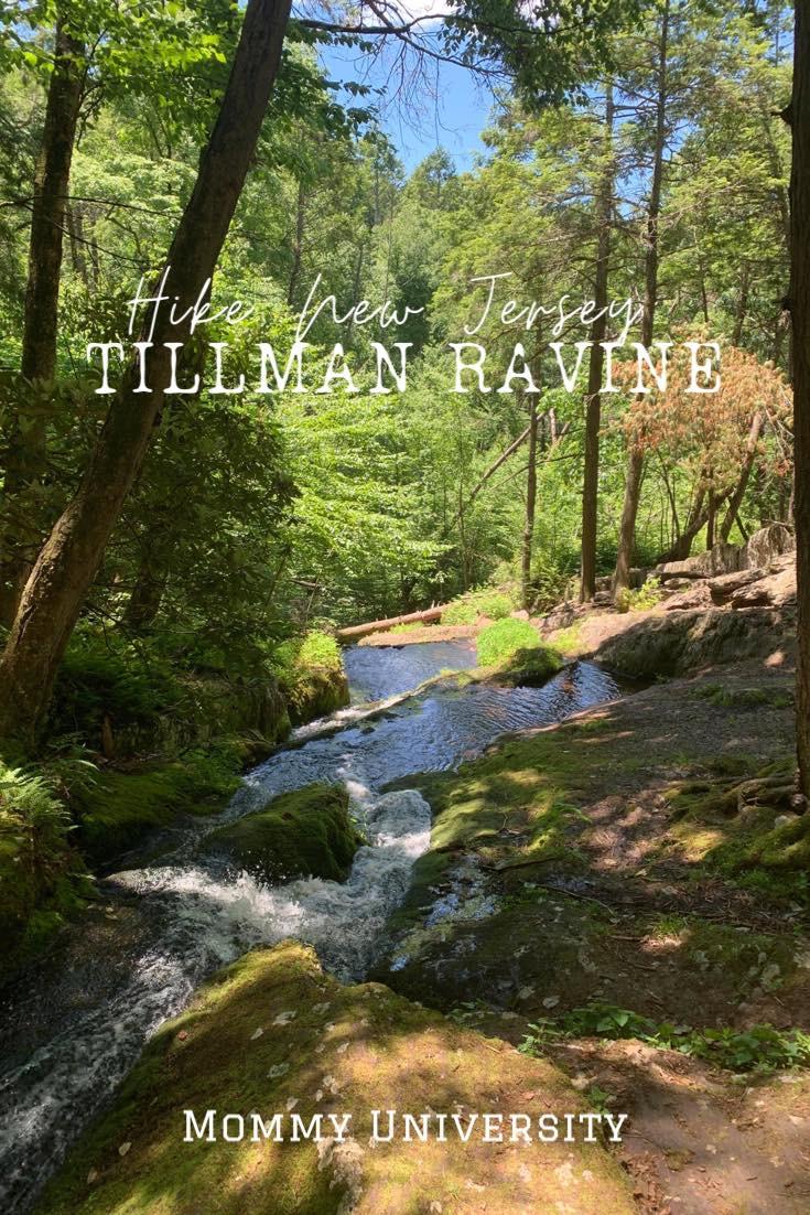 Hiking NJ: Tillman Ravine