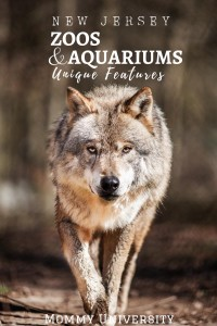 NJ Zoos and Aquariums