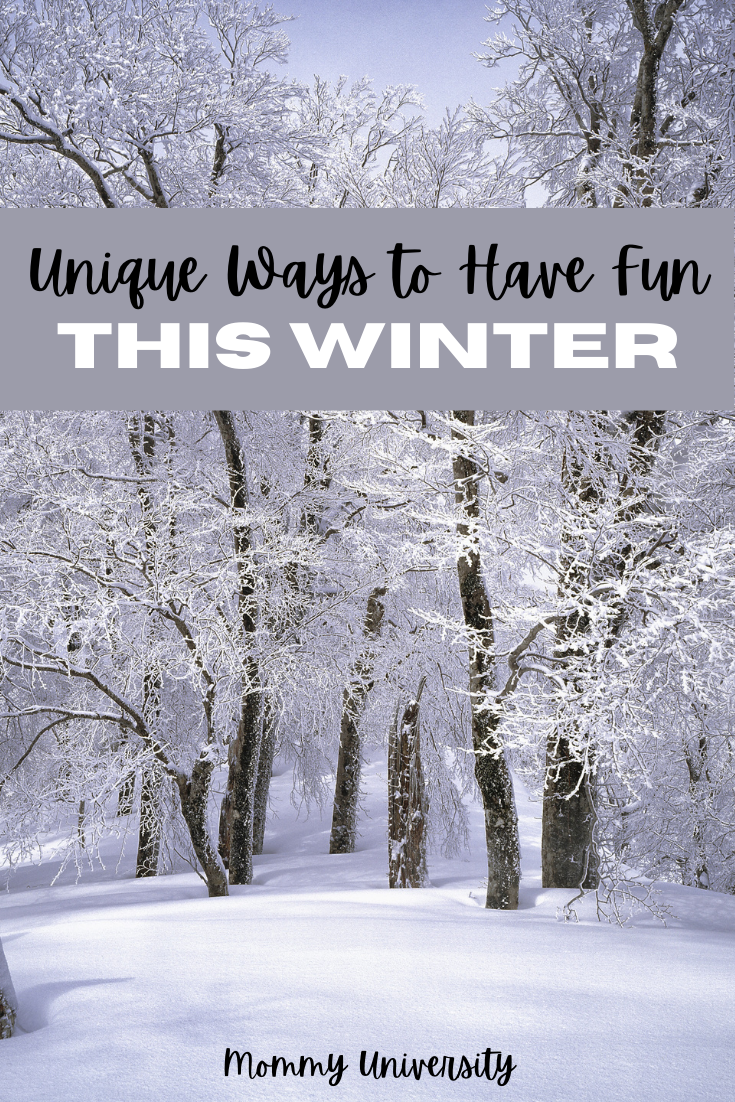 Unique Ways to Have Fun This Winter