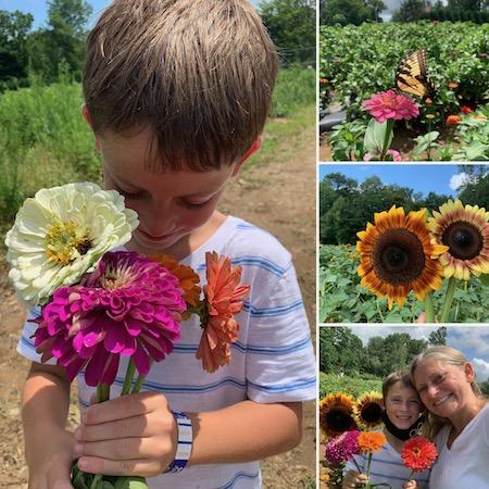U Pick Flowers at Stony Hill Farms
